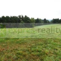 Prodej, pozemek pro bydlení, 4 700 m², Drevníky (okres Příbram)